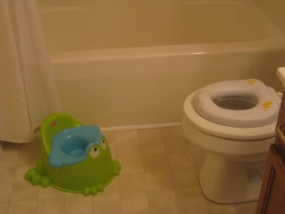 Potty and toilet seat for potty training 2 kids