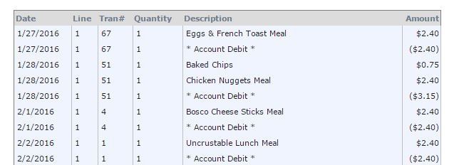 The purchase history from my child's school lunch account.