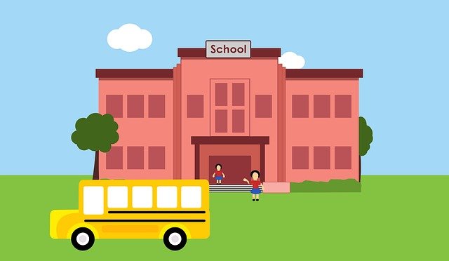 School and school bus