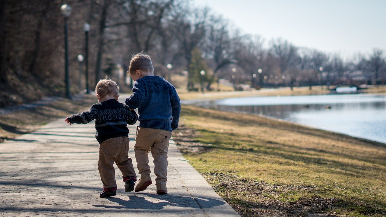 Two young brothers walking together - How to backup photos